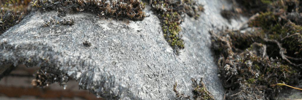 Risico Inventarisatie Asbest op Maat