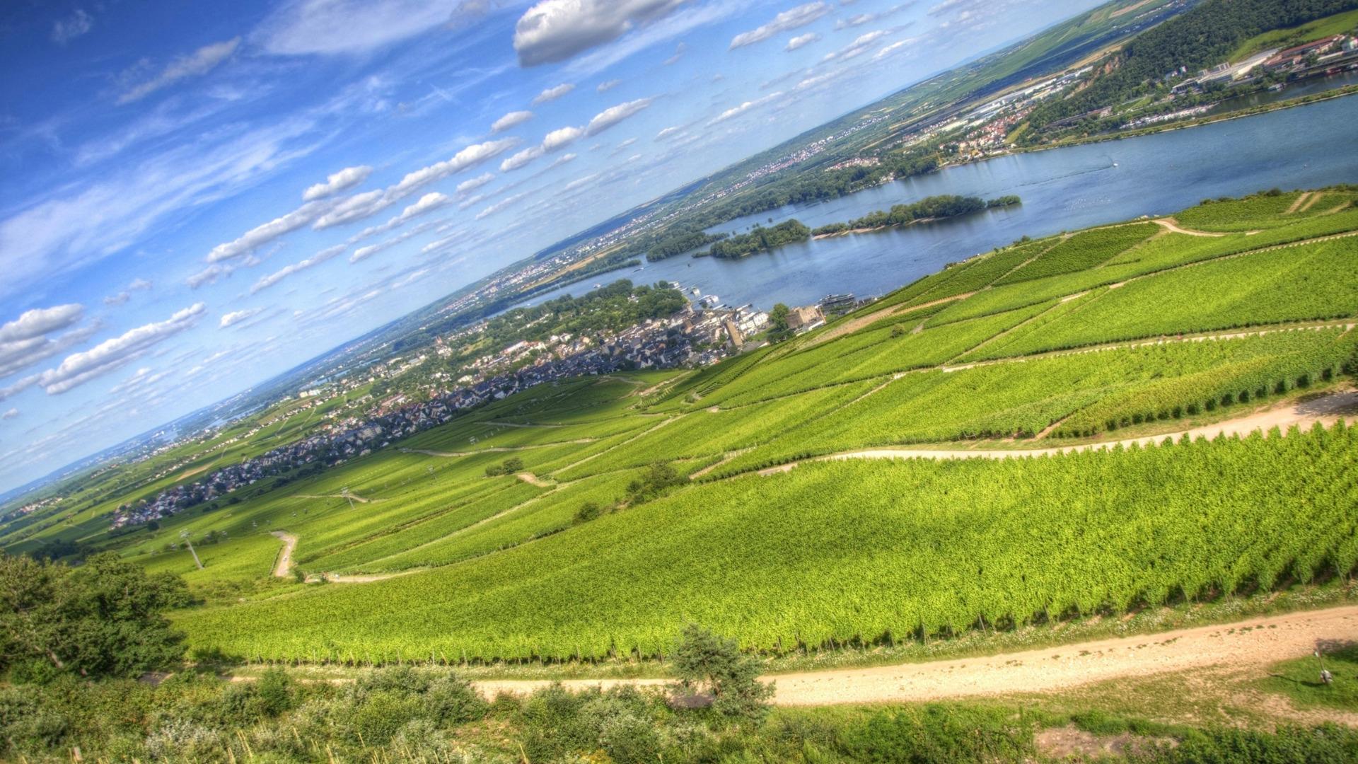 RIVM stelt nieuwe risicogrenzen PFAS in grond(water) vast